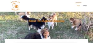 Shokase Shelties Website